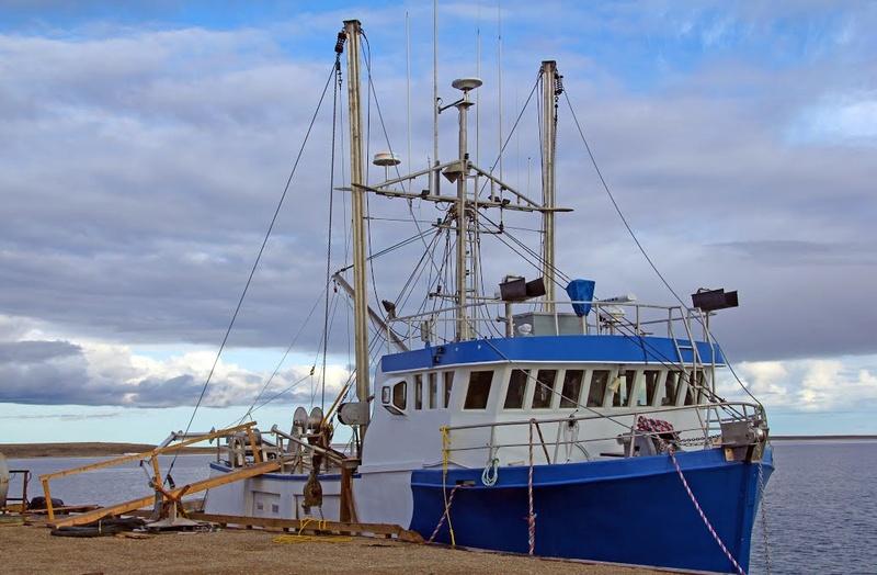 Ikaluktutiak, Cambridge Bay, Nunavut, Canada. 79540610