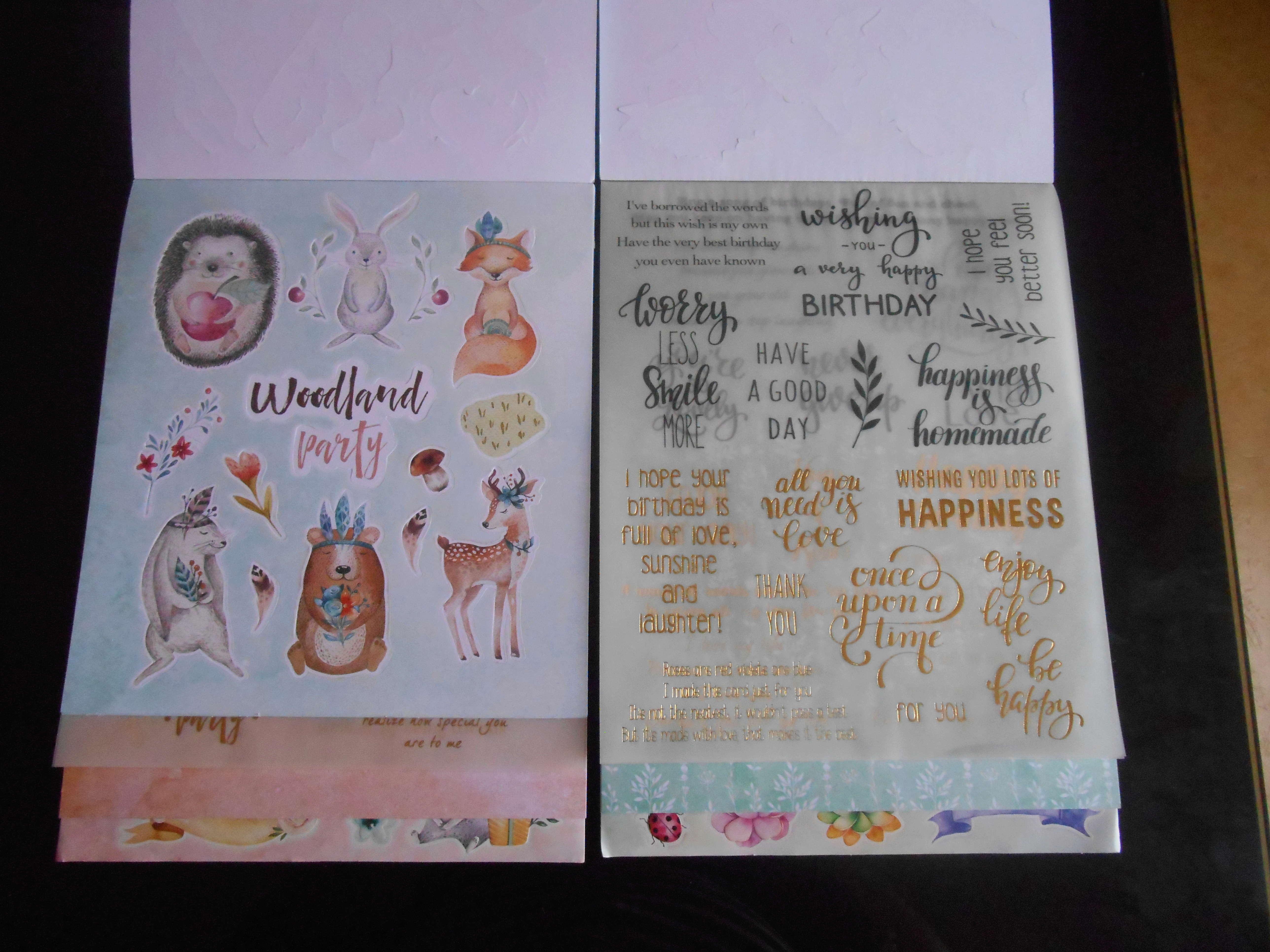 Mes achats en loisirs créatif - Page 5 Dscn6739