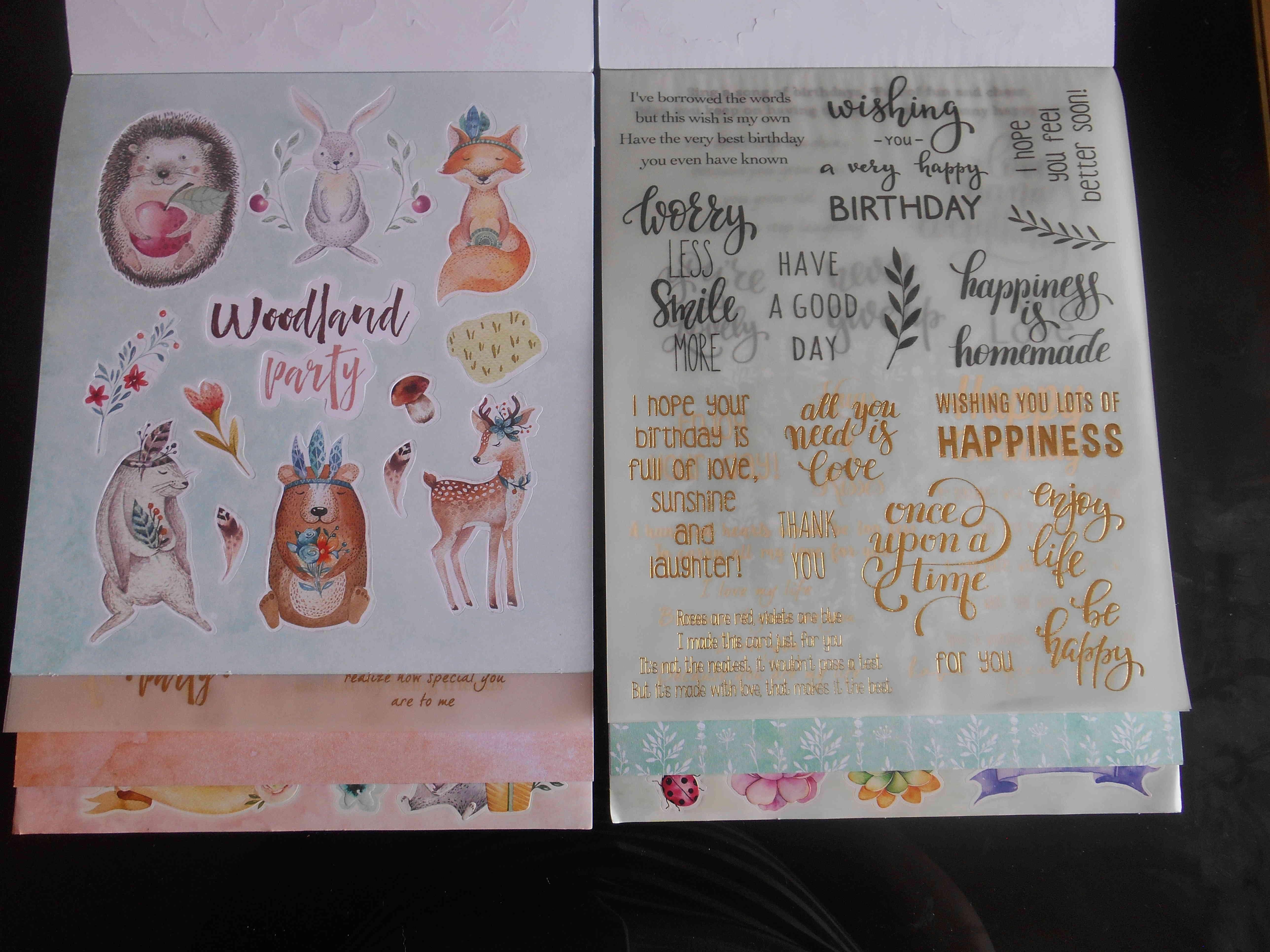 Mes achats en loisirs créatif - Page 5 Dscn6740