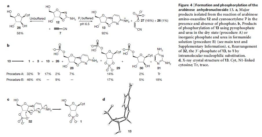 DNA & origin of life scenarios Pyrimi10