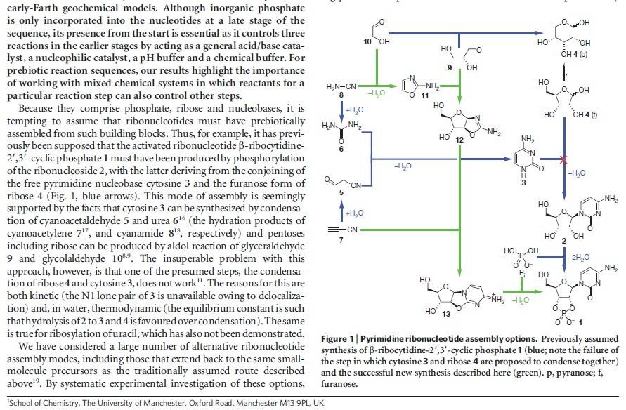 DNA & origin of life scenarios Pyrimi12