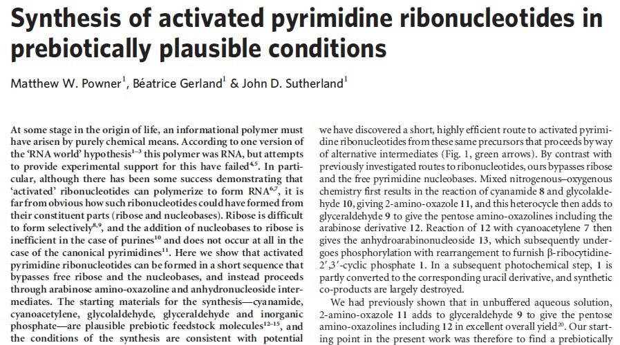 DNA & origin of life scenarios Pyrimi14