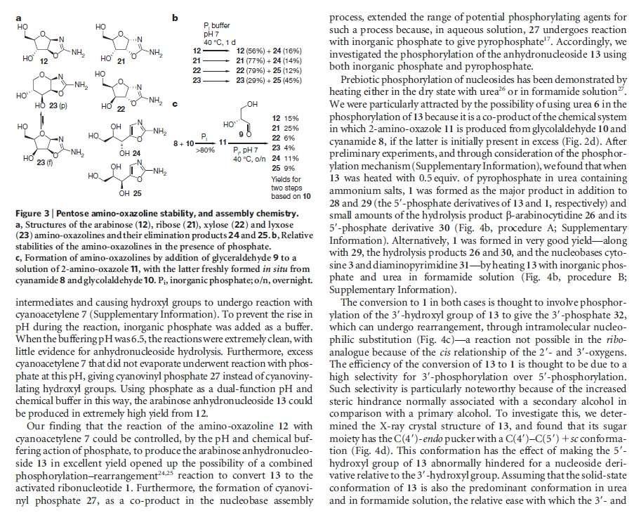 DNA & origin of life scenarios Pyrimi16