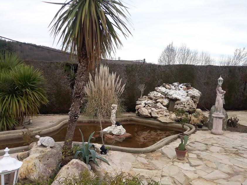 Début d'un jardin exotique Lourdais Bassin10