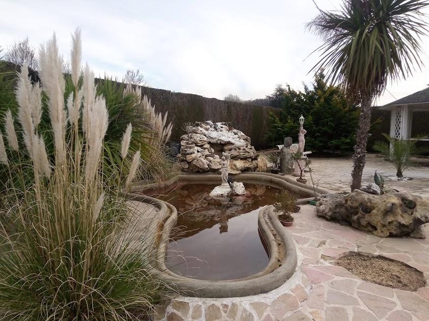 Début d'un jardin exotique Lourdais Bassin11