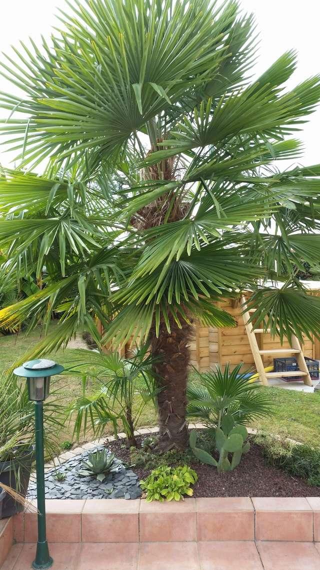 Mon jardin en Mayenne 20160912