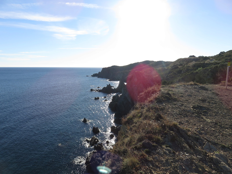 Le Sentier du littoral (Banyuls/Mer - Cerbère) Img_4111