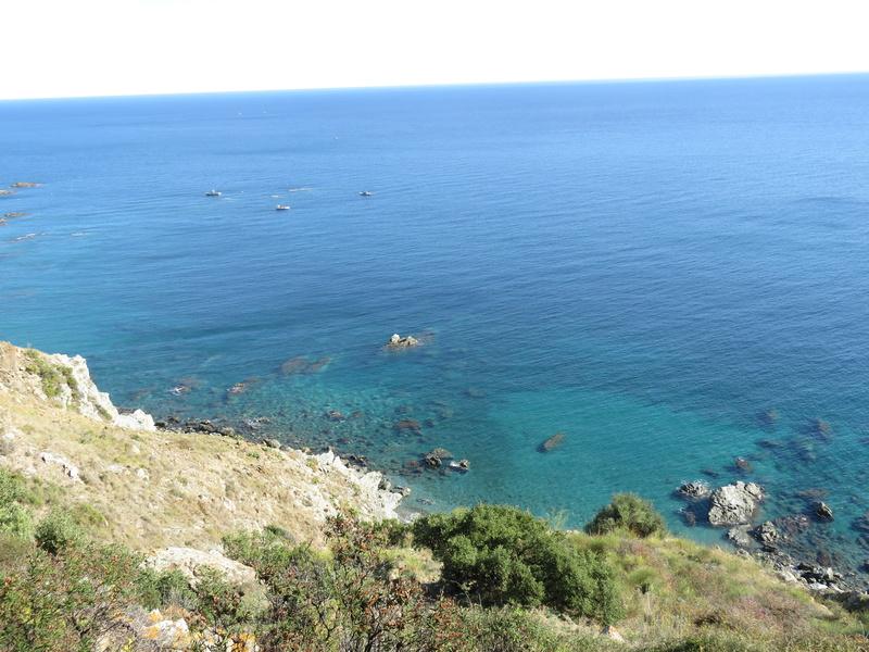 Le Sentier du littoral (Banyuls/Mer - Cerbère) Img_4114