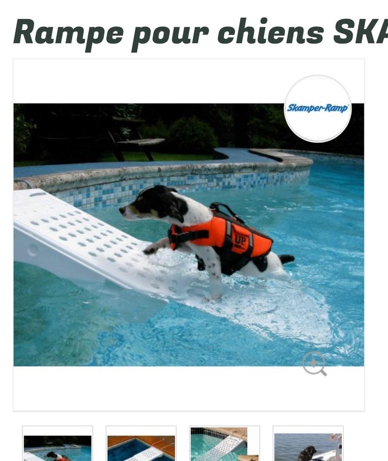 Les dangers de la piscine  969f6210