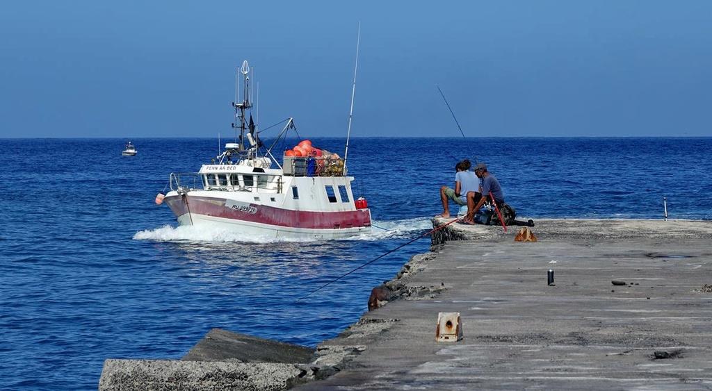 [VIE DES PORTS] Quelques bateaux de pêche (sur nos côtes Françaises) - Page 37 Le_po201