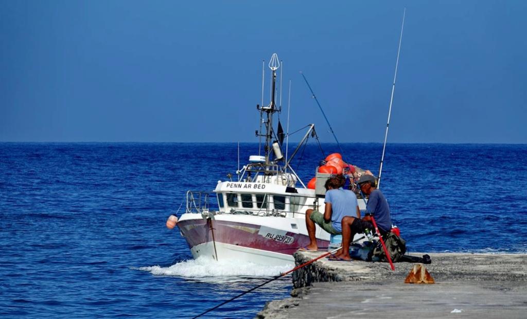 [VIE DES PORTS] Quelques bateaux de pêche (sur nos côtes Françaises) - Page 37 Le_po202