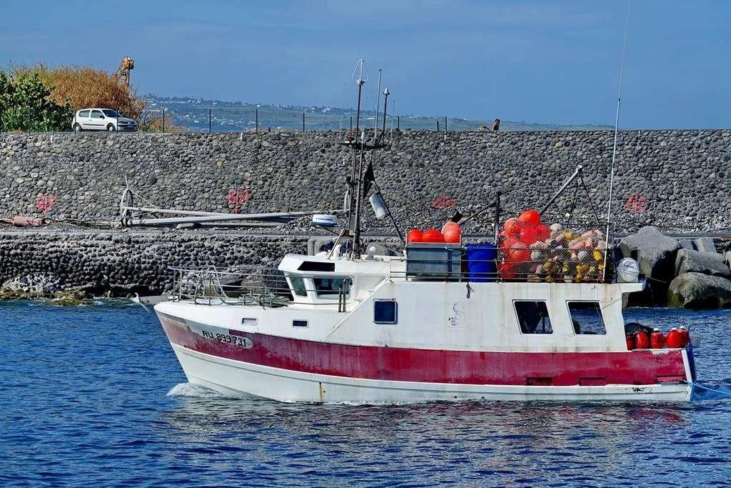 [VIE DES PORTS] Quelques bateaux de pêche (sur nos côtes Françaises) - Page 37 Le_po203