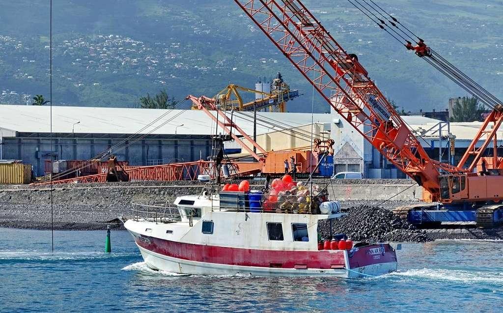 [VIE DES PORTS] Quelques bateaux de pêche (sur nos côtes Françaises) - Page 36 Le_po206