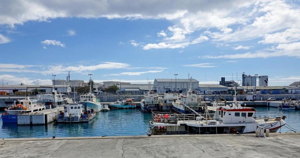 [Vie des ports] Les ports de la Réunion - Page 12 Le_po620
