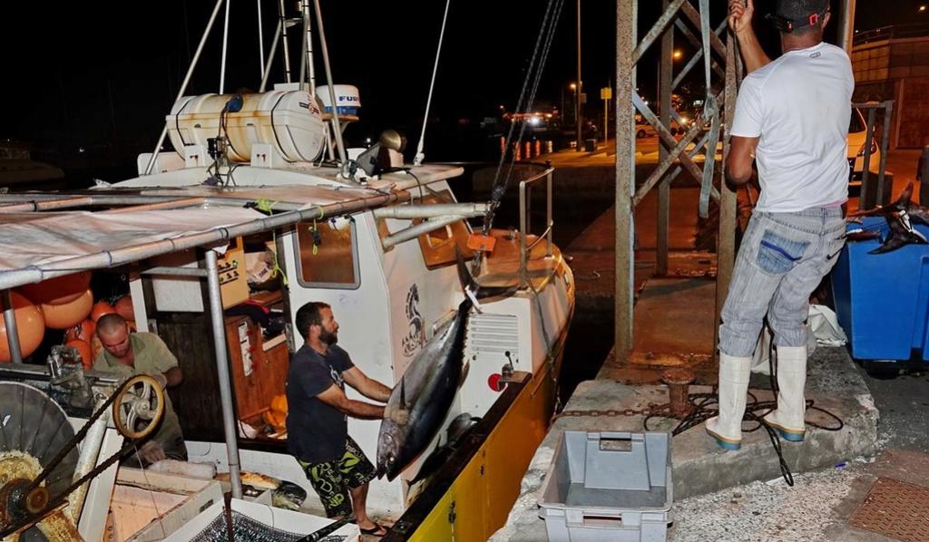 [VIE DES PORTS] Quelques bateaux de pêche (sur nos côtes Françaises) - Page 39 Retour83