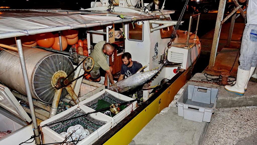 [VIE DES PORTS] Quelques bateaux de pêche (sur nos côtes Françaises) - Page 37 Retour87