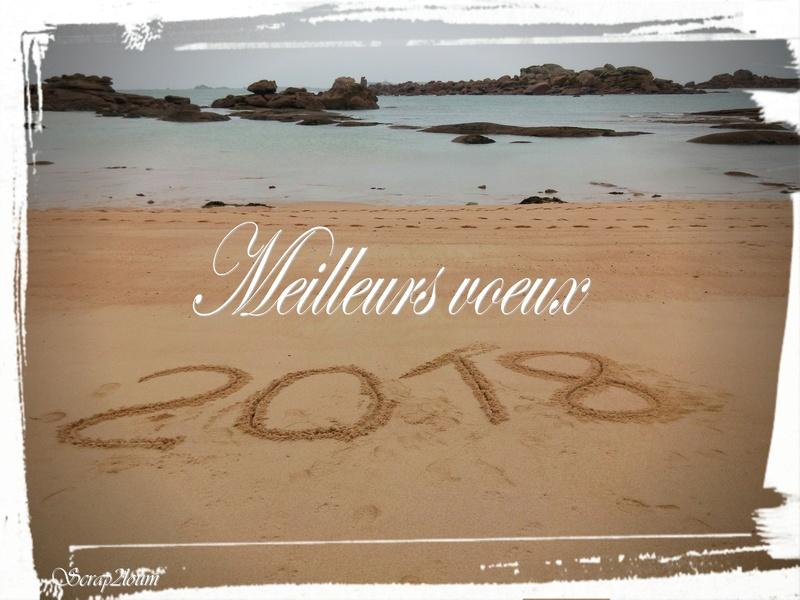 Nouvelle année,  2018 Img_2015