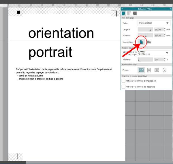 Print and Cut - repères Captur11