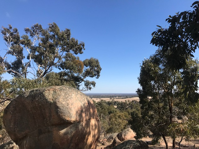 Aborigènes d'Australie Grampi11