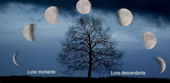 La Lune, ses phases et nous Lune2010