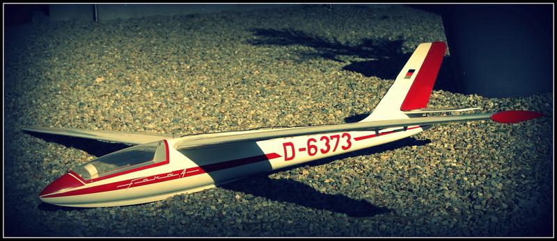 ( vendu) Planeur FOKA 4 graupner  Dsc06310