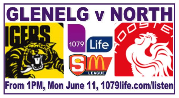 Round 10: Glenelg v North - Monday 11 June @ Gliderol Stadium Rd_10_14