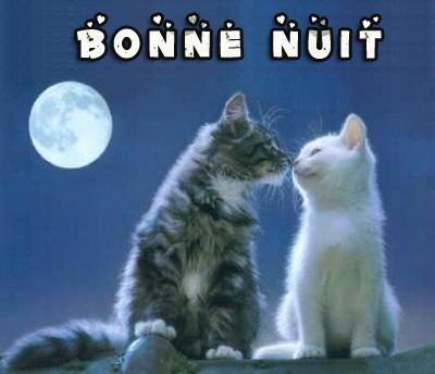 Bonjour /bonsoir de Février  - Page 4 Bonne_11