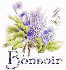Bonjour /bonsoir de Février  - Page 7 Bs811