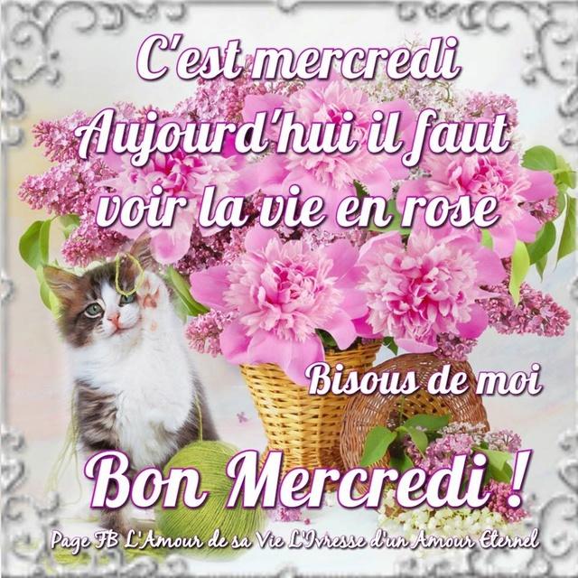Bonjour Bonsoir de Janvier  - Page 6 Mercre10