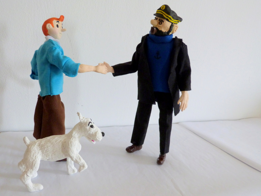 Tintin, Milou et le capitaine Haddock P1080710