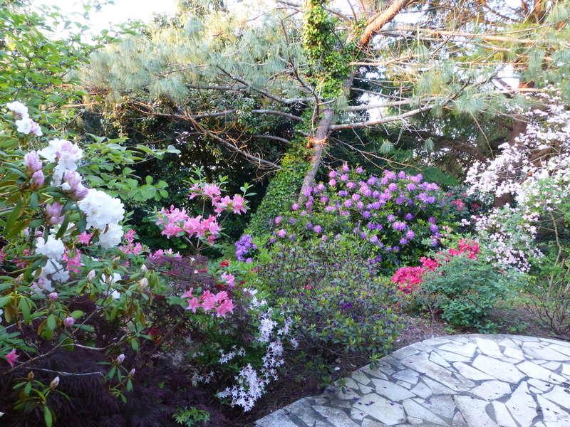 les jardins sont beaux en mai ! - Page 2 Florai15