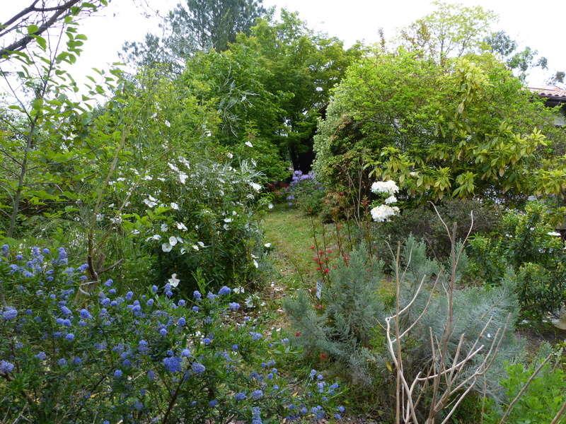 les jardins sont beaux en mai ! - Page 2 Florai16