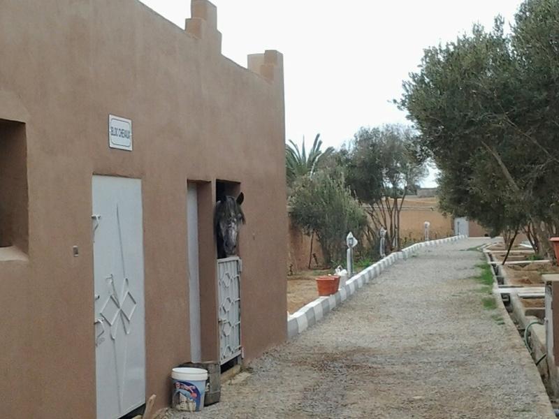 [Maroc Camp/Dernières nouvelles] Tiznit nouveau camping TINBAR pour 2018 - Page 4 20180114