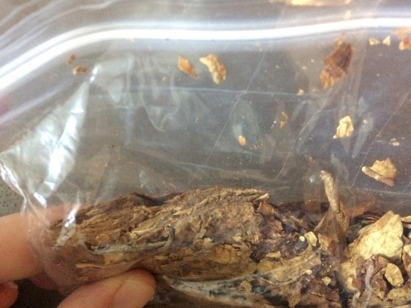 Tobacco ID—SG Kendal Plug or Something Else? C624c710