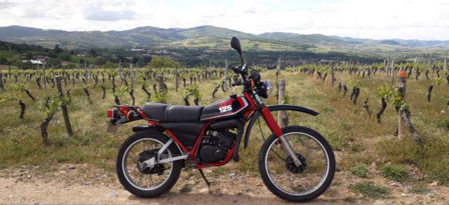 DTMX dans les monts du Lyonnais  Ballad10