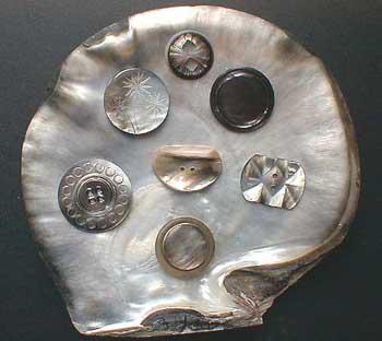archéologie - Huître à boutons ... 68610