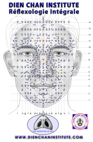 Le Dien Chan, réflexologie faciale 1ec96c10