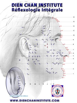 Le Dien Chan, réflexologie faciale Faf64d10