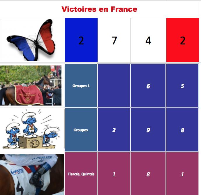 Le compteur de victoires, 2742, 25/11/17 QatarHope MasterDan Captur10