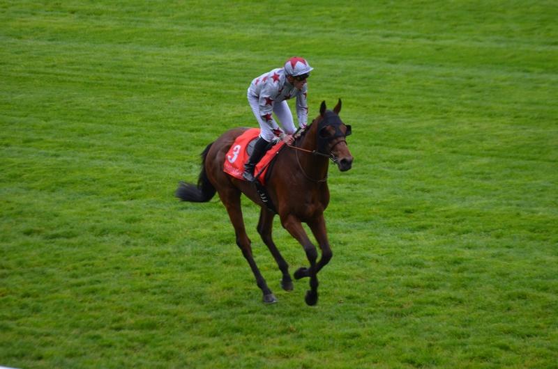 Prix Jockey club Dsc_0014