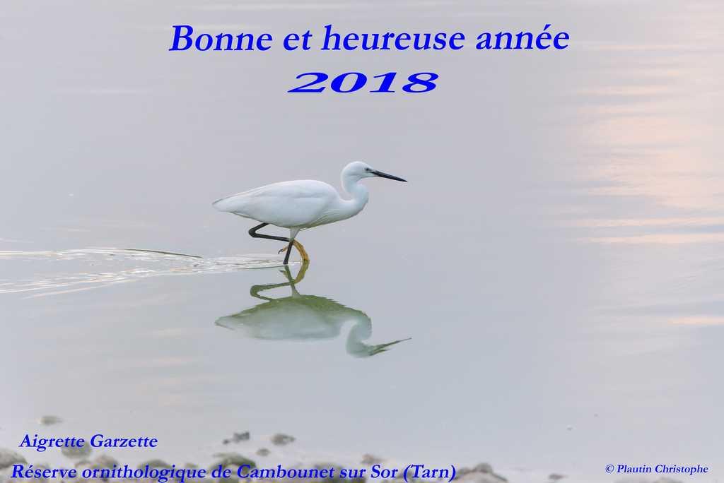 Castres - Mazamet LFCK / DCM 2017 - Page 4 Voeux_10