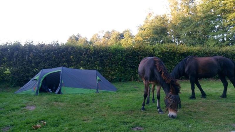 Tente Jamet Newberry 4000  Tentej11
