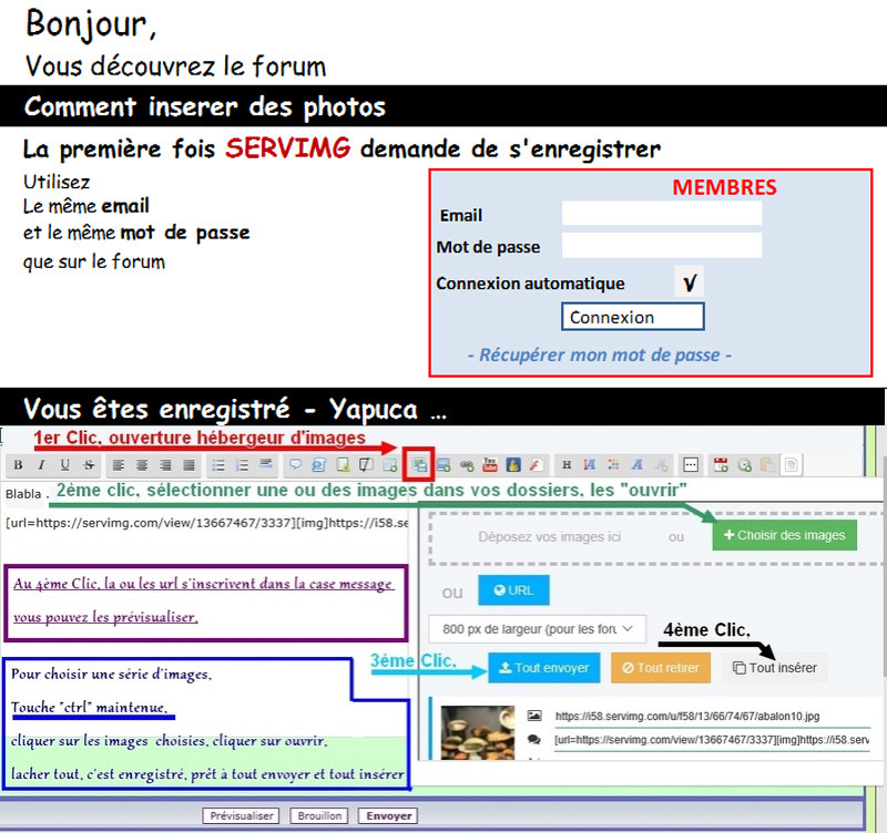 TUTORIEL METTRE IMAGE (OU PHOTO) SUR LE FORUM Insyre11
