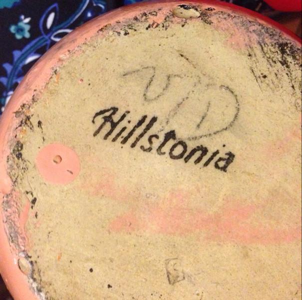 Hillstonia Img_1217