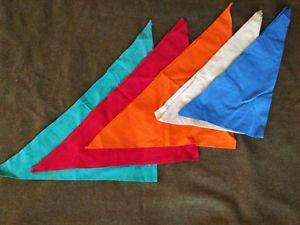 foulard de compagnie Foular10