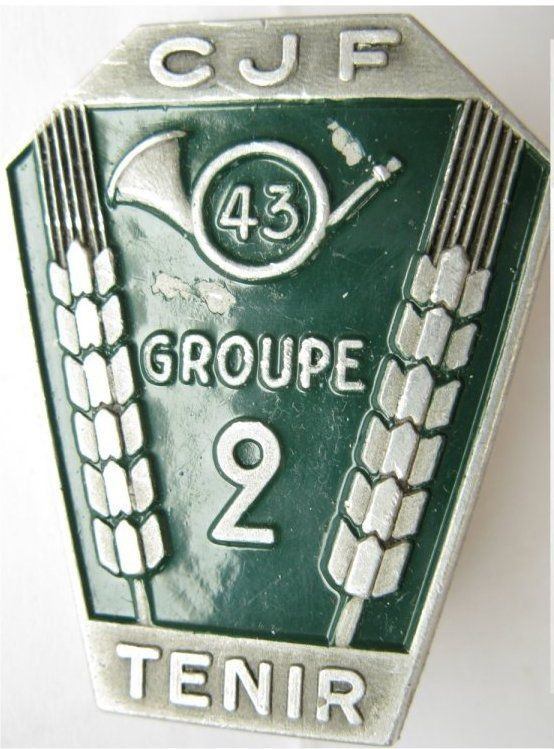 groupement - INSIGNES DES GROUPES du GROUPEMENT N°43 Groupe31