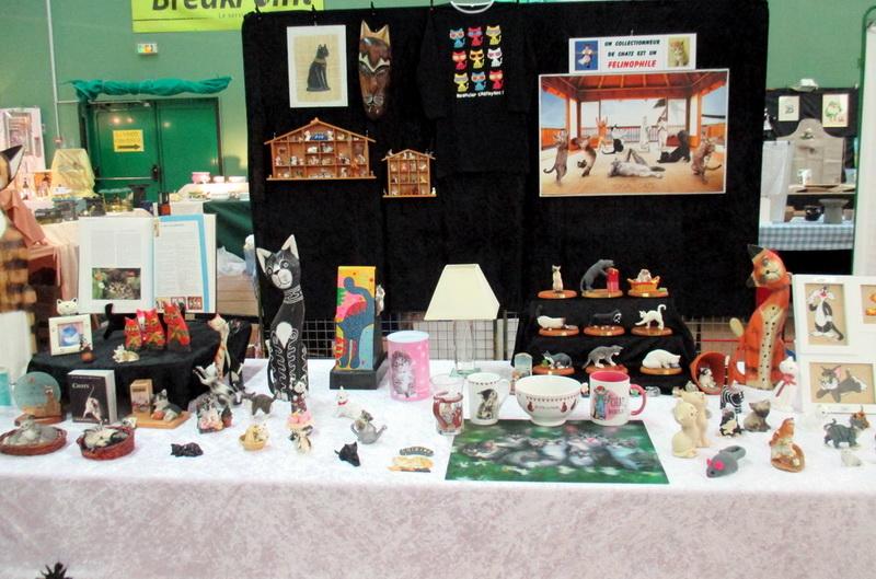 nouvelle expo à Montfort-sur-Meu Img_0012