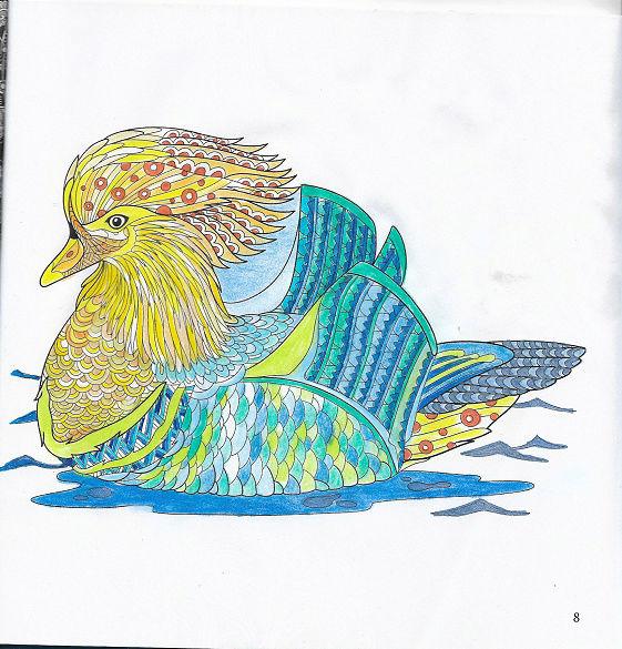 coloriage anti-stress pour adulte - Page 2 Numyri37