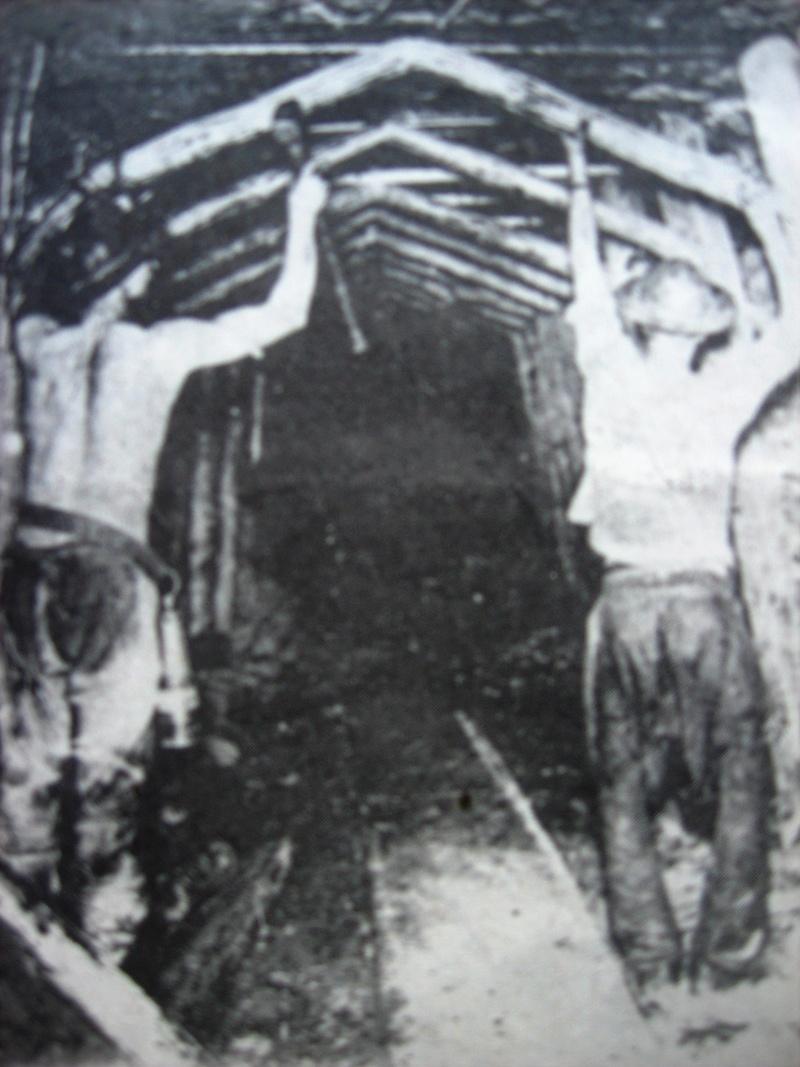Catastrophe minière - Page 4 Img_1229