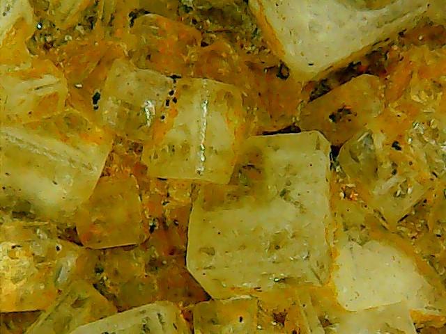 Fluorine du Bois du Roptai (Ave et Auffe) Win_2159